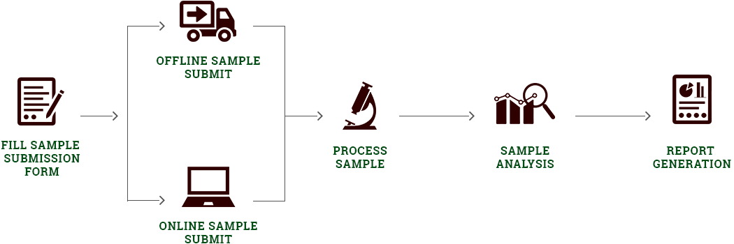 Our Process Diagram